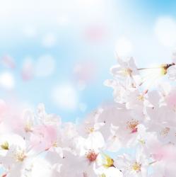 Иде топла и влажна пролет. Сн.: Shutterstock