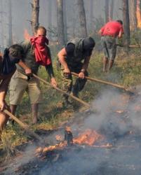 Около 40 доброволци се включиха в гасенето на огъня. Сн.: Bulphoto