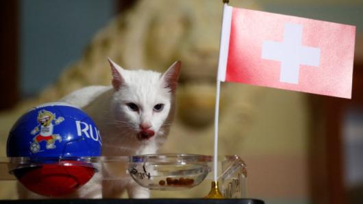 Снимка: Reuters