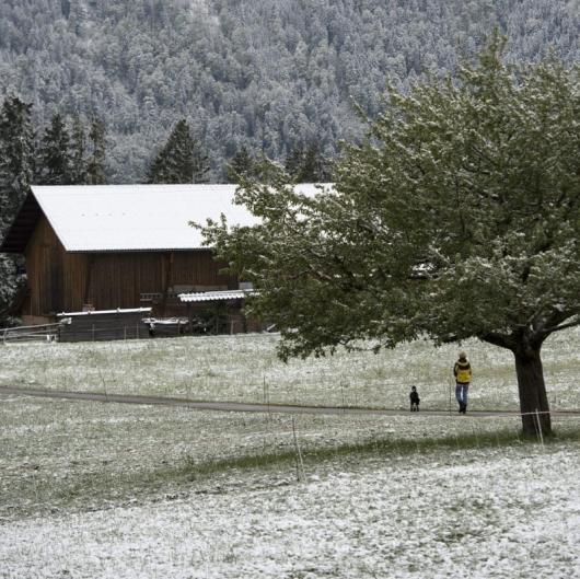 Метеоролозите прогнозират топла зима с температури над обичайните. Сн.: EPA/БГНЕС